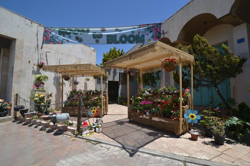 cf53166aa8d8f2 Figure 10: Flower shop near Israeli West Bank Barrier, Bethlehem