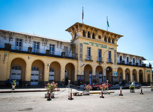 The New Flower: Addis Ababa and the Project of African Modernity