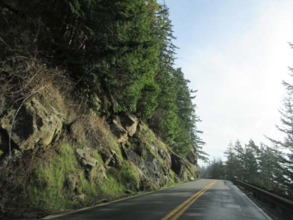 Chuckanut Drive, near Bellingham, Washington (photo courtesy of Lynette Felber)